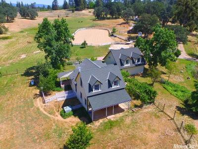 Colfax Single Family Home For Sale: 850 Kingston Way