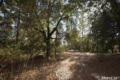 Amador County Residential Lots & Land For Sale: 13677 Irishtown Drive