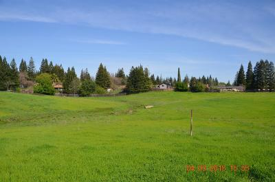 Orangevale Residential Lots & Land For Sale: 6920 Santa Juanita Avenue