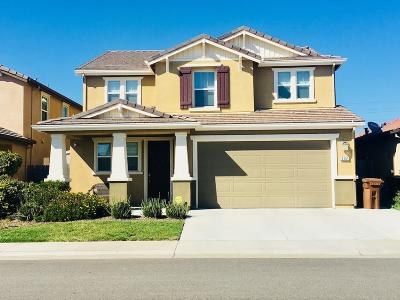 Elk Grove Single Family Home For Sale: 8381 Terracotta Circle