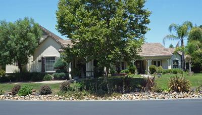 Elk Grove Single Family Home For Sale: 9715 Silvertrail Lane