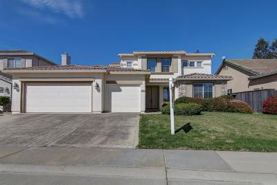 Elk Grove Single Family Home For Sale: 9555 Lazy Saddle Way