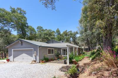 placerville Single Family Home For Sale: 6355 Zamora Drive