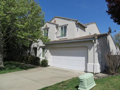 Rocklin Single Family Home For Sale: 6509 Turnstone Way