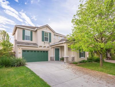 West Sacramento Single Family Home For Sale: 2483 Bear River Court