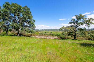 Nevada County Commercial Lots & Land For Sale: 20760 White Oak Dr