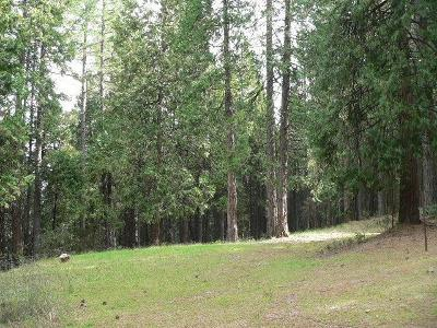 Volcano Residential Lots & Land For Sale: 22063 Allan Court