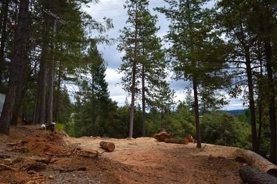 Placer County Residential Lots & Land For Sale: 580 Pc Lane