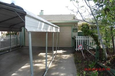 Modesto Single Family Home For Sale: 2433 Budd Street