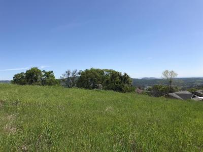 Copperopolis Residential Lots & Land For Sale: 1996 Quiver
