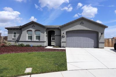 Manteca Single Family Home For Sale: 1295 Grafton Court