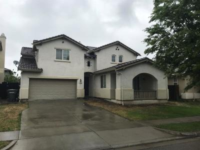 Patterson Single Family Home For Sale: 1455 Mesa Creek Dr