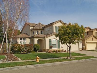 Lodi Single Family Home For Sale: 2041 Snowbird Drive