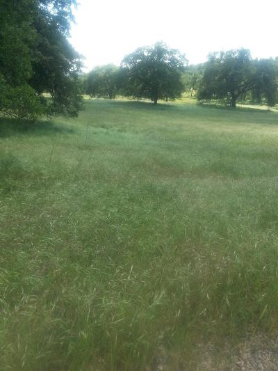 Sacramento County Residential Lots & Land For Sale: 85 Silver Eagle Road