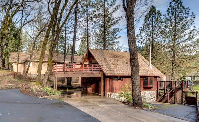 Groveland Single Family Home For Sale: 19604 Pine Mountain Drive