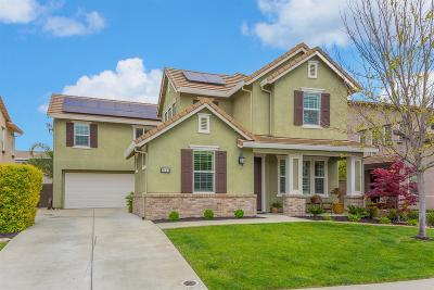 Rocklin Single Family Home For Sale: 2133 Ranch View Drive
