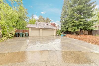 Orangevale Single Family Home For Sale: 6437 Breezewood Court