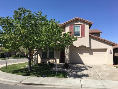 Sacramento Single Family Home For Sale: 5039 Kankakee Drive