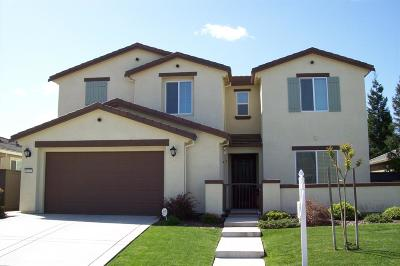 Elk Grove Single Family Home For Sale: 9620 Ronaldo Falls Way