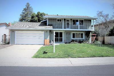 Rancho Cordova Single Family Home For Sale: 2223 El Canto Circle