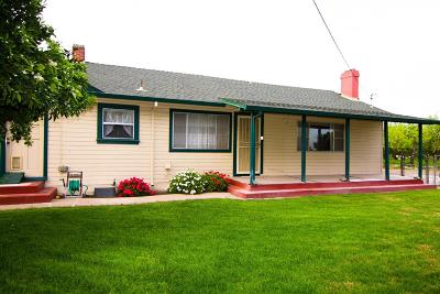 Ripon Single Family Home For Sale: 17283 East State Highway 120