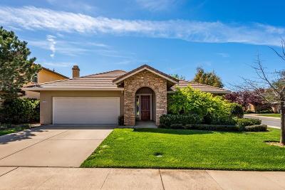 Folsom Single Family Home For Sale: 1244 Fergusen Way