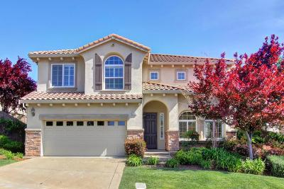 El Dorado Hills Single Family Home For Sale: 1207 Villagio Drive