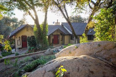 Placerville Single Family Home For Sale: 3281 Yearling Trail
