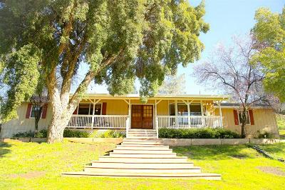 Valley Springs Single Family Home For Sale: 1825 North Ranchero Road
