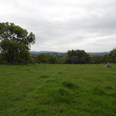 Amador County Commercial Lots & Land For Sale: 8741 French Bar Road