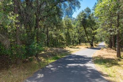 Placerville Residential Lots & Land For Sale: 5541 Rocky Ridge