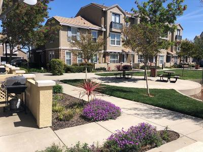 Rocklin Condo For Sale: 6201 Lonetree Boulevard
