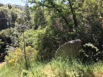 River Pines Residential Lots & Land For Sale: 22893 Pigeon Trail