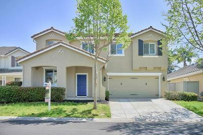Elk Grove Single Family Home For Sale: 2809 Bertolani Circle