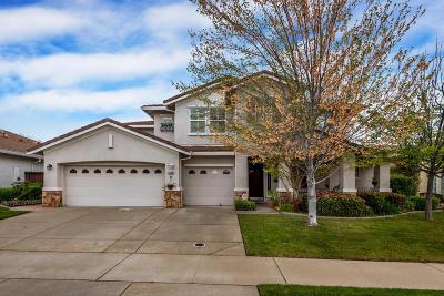Roseville Single Family Home For Sale: 6104 Big Bend Drive