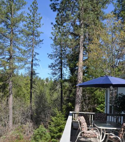 Pollock Pines Single Family Home For Sale: 4032 Sierra Springs Drive