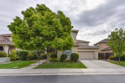 Elk Grove Single Family Home For Sale: 9631 Pilliteri Way