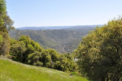 El Dorado County Residential Lots & Land For Sale: Metate Trail