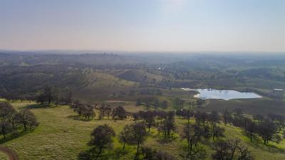 Amador County Residential Lots & Land For Sale: 3 Greilich Road