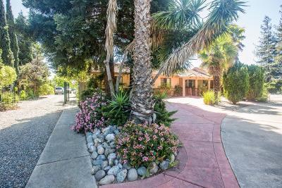 Sacramento Single Family Home For Sale: 7710 Elsie Avenue