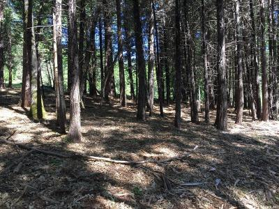 Camino Residential Lots & Land For Sale: 16 Snows Road