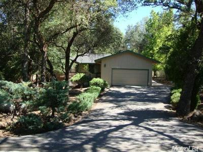Auburn Single Family Home For Sale: 11982 Torrey Pines Drive