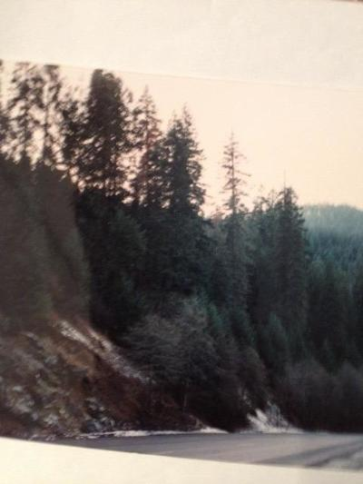 Pollock Pines Residential Lots & Land For Sale: Highway 50