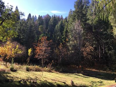 Nevada County Commercial Lots & Land For Sale: 17271 Broken Arrow Place