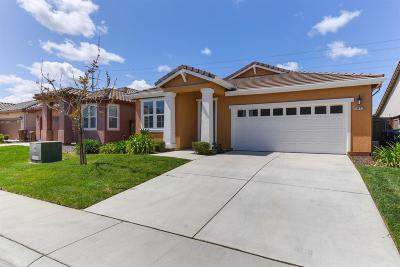 Elk Grove Single Family Home For Sale: 10472 Siltstone Way
