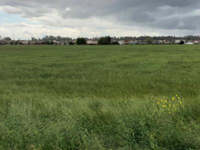 Merced Residential Lots & Land For Sale: 507 West Cardella