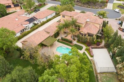 Orangevale Single Family Home For Sale: 9131 Serenity Lane