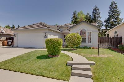 Elk Grove Single Family Home For Sale: 8425 Winterberry Drive