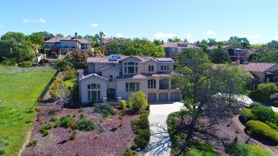 El Dorado Hills Single Family Home For Sale: 5175 Breese Circle