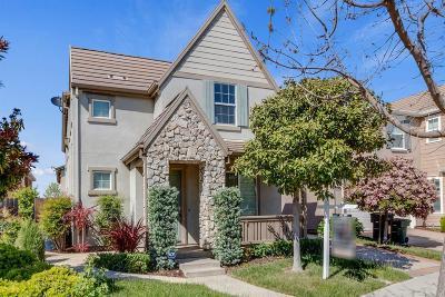 Mountain House Single Family Home For Sale: 229 North Orinda Street